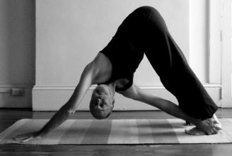 Steven Valloney, yogi